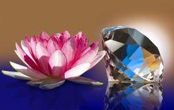 Imagen de la flor de loto y del cierre cristalino para arriba foto de archivo libre de regalías