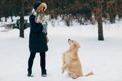 Imagen de la mujer con el perro perdiguero que camina en parque del invierno Imágenes de archivo libres de regalías