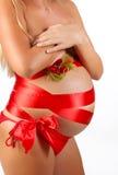 Imagen de la mujer embarazada imágenes de archivo libres de regalías
