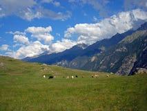 Imagen de la naturaleza con las montañas del Cáucaso y una multitud Imagen de archivo