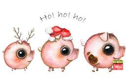 Imagen de la Navidad de la acuarela del tres cerdos lindos libre illustration