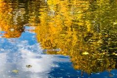 Imagen de la reflexión de los árboles del amarillo del otoño en la charca en un parque Fotos de archivo