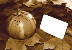 Imagen de la sepia de la acción de gracias con la calabaza y la tarjeta en blanco Imagenes de archivo