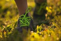 Imagen de los zapatos del deportista o del corredor Fotografía de archivo libre de regalías