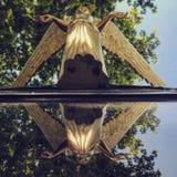 Imagen de oro del vintage de un ángel en Odessa - UCRANIA Fotos de archivo libres de regalías