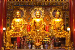 Imagen de tres Buda Fotos de archivo