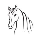 Imagen de un caballo Imágenes de archivo libres de regalías