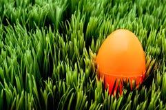Imagen de un huevo de Pascua anaranjado en hierba verde Fotos de archivo libres de regalías