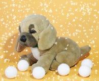 Imagen de un perrito del juguete del ` s del niño Imágenes de archivo libres de regalías