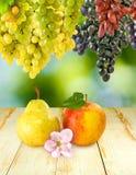 Imagen de una manzana, de peras y de uvas en un fondo verde Imágenes de archivo libres de regalías