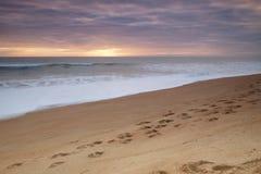 Imagen de una playa que muestra huellas en el primero plano Imágenes de archivo libres de regalías