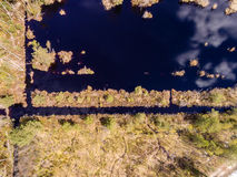 imagen del abejón Vista aérea de la zona rural Imagen de archivo
