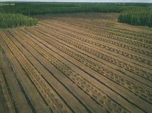 imagen del abejón vista aérea de la zona rural con los campos del devel del césped Imagen de archivo