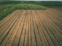 imagen del abejón vista aérea de la zona rural con los campos del devel del césped Imagenes de archivo