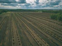 imagen del abejón vista aérea de la zona rural con los campos del devel del césped Imagen de archivo libre de regalías