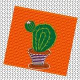 Imagen del cactus floreciente Imagen de archivo