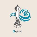 Imagen del calamar Fotografía de archivo libre de regalías