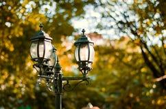 Imagen del estilo del vintage con la lámpara de calle vieja en el parque Foto de archivo