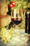 Imagen del estilo del vintage de una vida inmóvil con el vino Foto de archivo libre de regalías