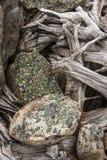 Imagen del extracto del ` s de la naturaleza Fotos de archivo