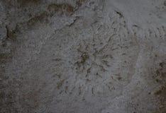 Imagen del fondo de la sal del mar en piedra fotos de archivo libres de regalías