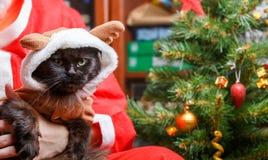 Imagen del gato negro del ` s del Año Nuevo en traje de los ciervos con Papá Noel Fotos de archivo