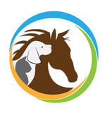 Imagen del gato y del caballo del perro Imagenes de archivo