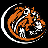 Imagen del gráfico de la mascota del tigre Fotos de archivo libres de regalías