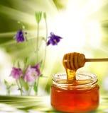 Imagen del honeyon hecho en casa el tablero en el primer verde del nbackground Imagen de archivo libre de regalías