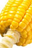 Imagen del maíz Fotografía de archivo