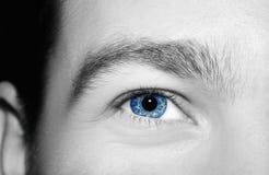 Imagen del ojo azul del ` s del hombre Imagen de archivo libre de regalías
