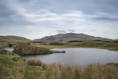 Imagen del paisaje de la tarde del lago Llyn y Dywarchen en otoño en Sn Fotografía de archivo