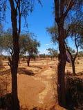 Imagen del paisaje para el uso del fondo Foto de archivo libre de regalías