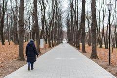 Imagen del parque del otoño con la gente que camina Foto de archivo