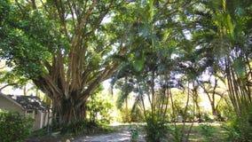Imagen del patio en el lugar del centro turístico Foto de archivo libre de regalías