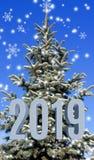 imagen del primer del árbol de navidad fotografía de archivo