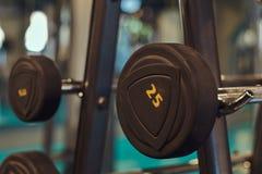 Imagen del primer de dumbells en un soporte Equipo del gimnasio Foto de archivo