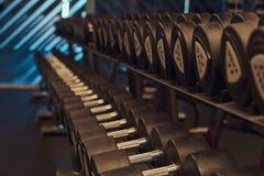 Imagen del primer de dumbells en un soporte Equipo del gimnasio Imagenes de archivo