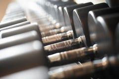 Imagen del primer de dumbells en un soporte Equipo del gimnasio Fotografía de archivo libre de regalías