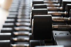 Imagen del primer de dumbells en un soporte Equipo del gimnasio Fotos de archivo libres de regalías