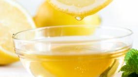 Imagen del primer de la rebanada del limón sobre el tarro con la miel de la abeja Fotos de archivo libres de regalías