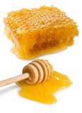 Imagen del primer del panal y de la miel Imágenes de archivo libres de regalías