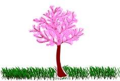 imagen del Sakura brillantemente floreciente magnífico y de la hierba verde en el parque ilustración del vector