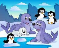 Imagen 1 del tema de los sellos y de los pingüinos ilustración del vector