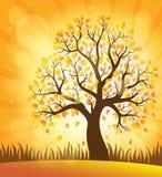 Imagen 4 del tema del árbol del otoño Imágenes de archivo libres de regalías