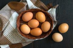 Imagen del top de la aún-vida de los huevos de gallina de Brown Imágenes de archivo libres de regalías