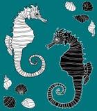 Imagen del vector de los caballos de mar decorativos Fotos de archivo libres de regalías