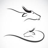 Imagen del vector de un búfalo