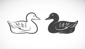 Imagen del vector de un pato Imágenes de archivo libres de regalías