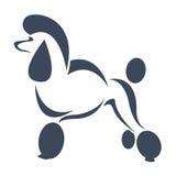 Imagen del vector de un perro (caniche) Imagenes de archivo